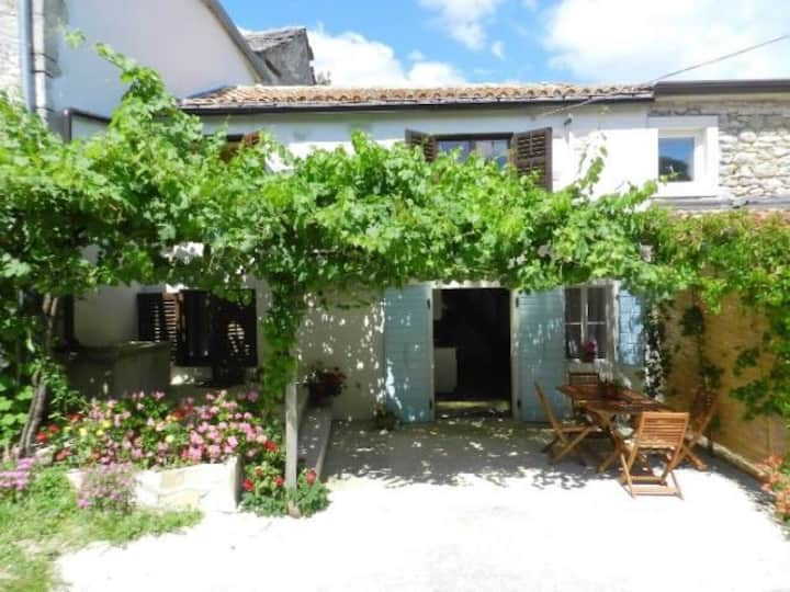 Two Bedroom Stone house, in the countryside in Pazin