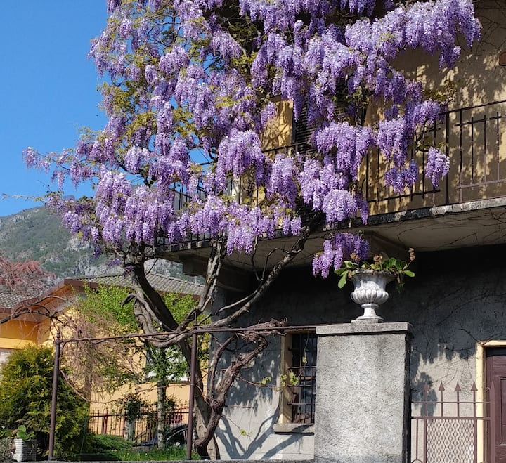 Casa Glicine 2, beautiful house on Como Lake