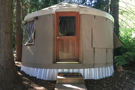 Devils Mountain Yurt
