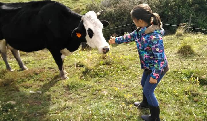 La Primera Finca Certificada Organica en Ecuador