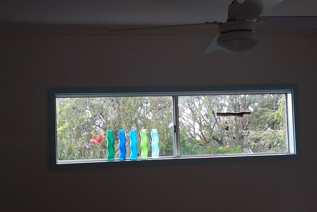 This window lets so much light into the living area. It's great when the bottlebrush outside is in bloom!
