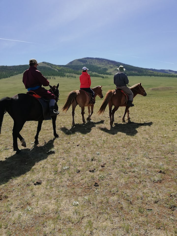 Summer riding