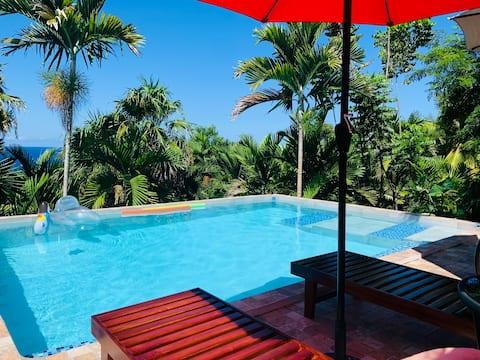 Poolside OceanView Suite @ The Coconut Palm Villa🌴