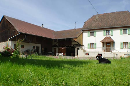 Bed and Breakfast, near Basel - Mulhouse