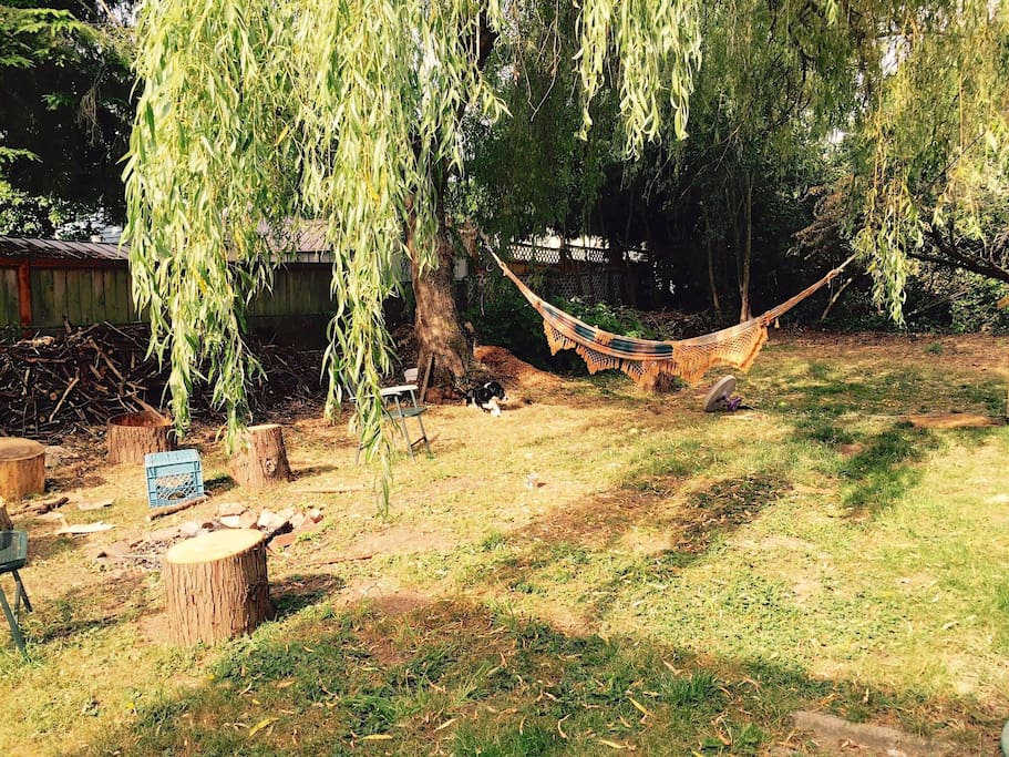 Backyard with hammock and fire pit