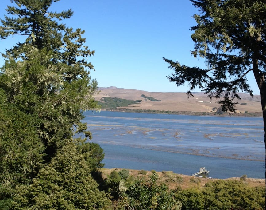 View of Tomales Bay tide marsh from the deck off the living room