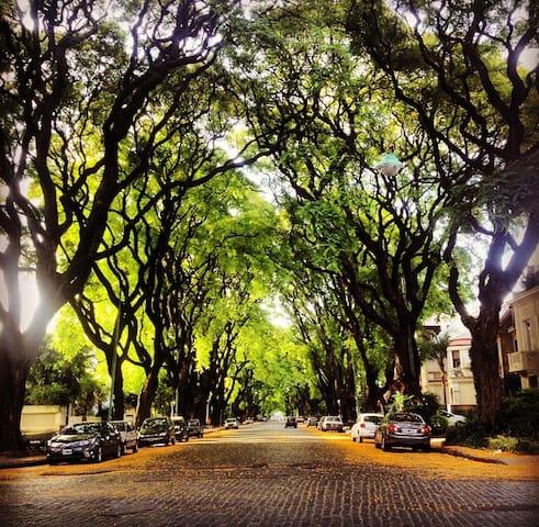Av.Melián, una de las más lindas de la ciudad