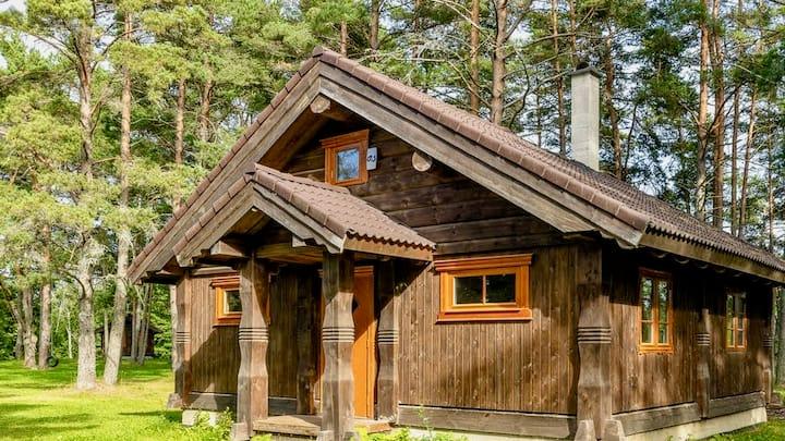Männi Guesthouse with sauna