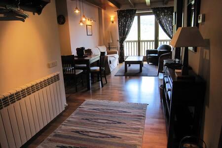 apartamento con sol y vistas Aneto  - Apartament
