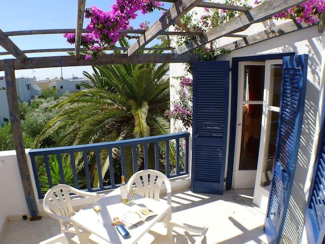1 bedroom on olive grove near beach - Lasithi - Apartament