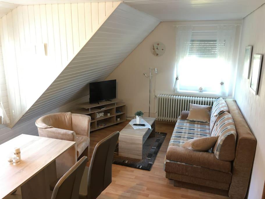 Wohnbereich mit Schlafcouch & TV mit SAT / DVD-Player
