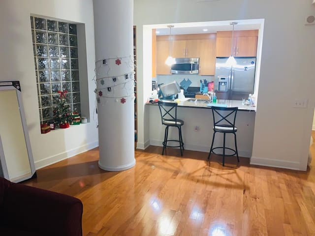 Center of DC modern apartment