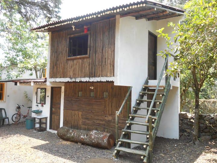 Cabaña de Bambú  en Rancho Sustentable