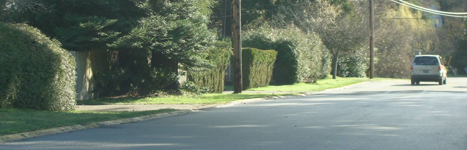 Your house is tucked along the hedges of the avenue.