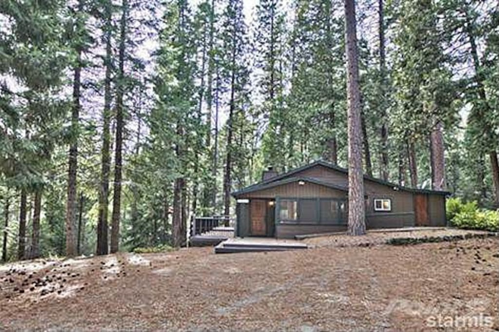 front view, paved driveway covered in pine needles