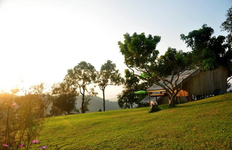 CHIANGMAI ,Hidden gem top of the hill in Mon Hmong