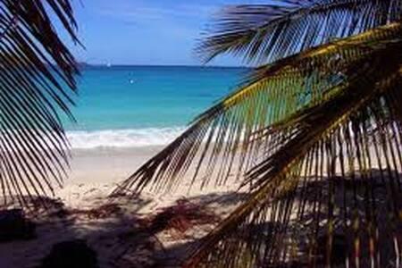 Villas De Oros jungle villas - Playa Tortuga - Huvila