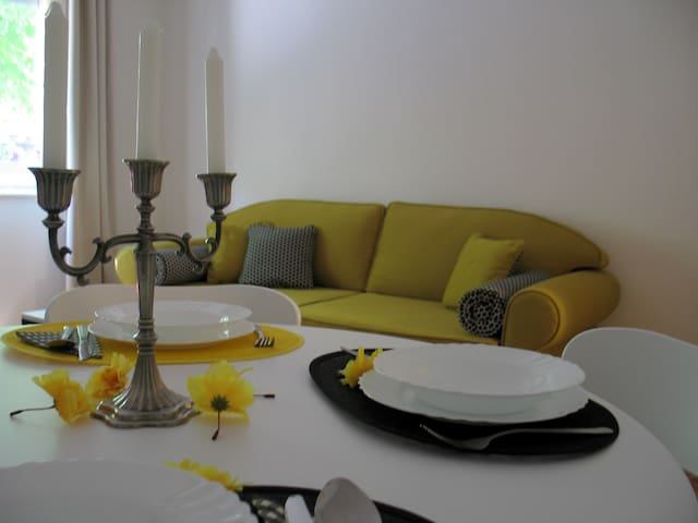 Apartment in the Old town, City Centre-Dorćol!