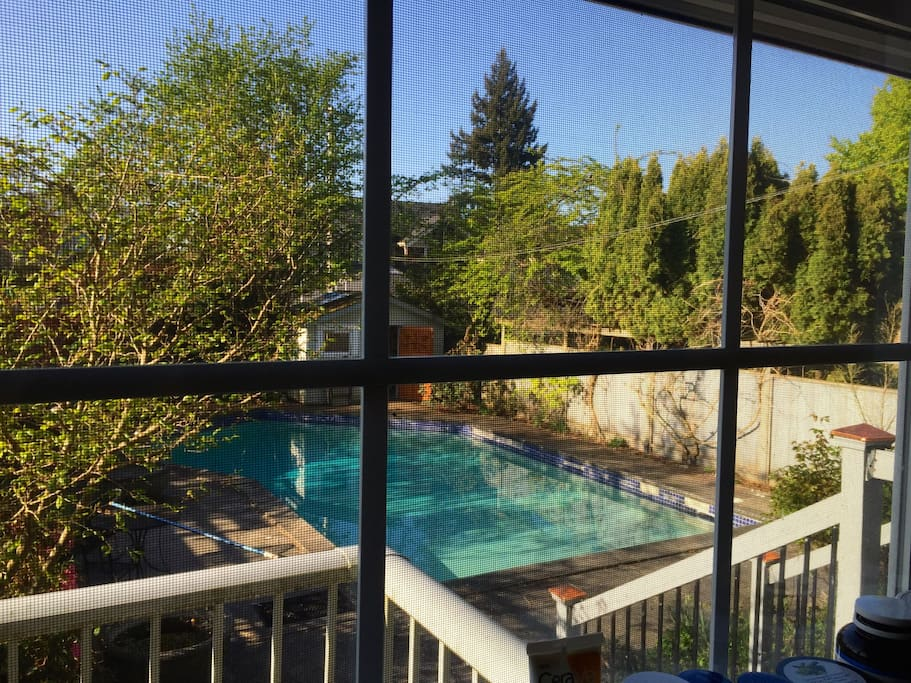 Pool view from kitchen window