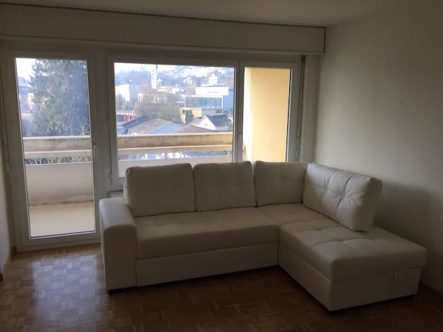 Near Zurich,big apartment w balcony - Rudolfstetten-Friedlisberg - Daire