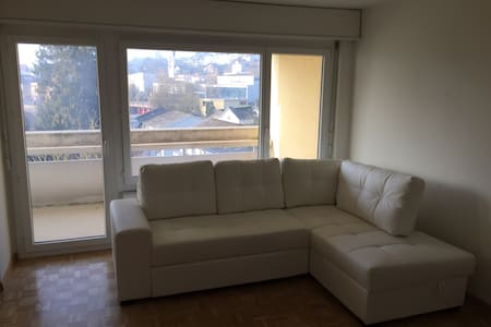 Near Zurich,big apartment w balcony - Rudolfstetten-Friedlisberg - 公寓