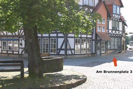 Ferienwohnung direkt am Kurpark - Bad Sooden-Allendorf - Отпускное жилье