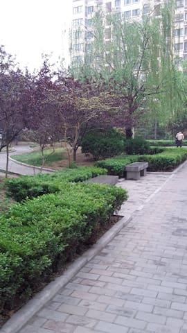 济南大明湖附近济安新区,离趵突泉,万达泉城广场很近 - Jinan - Apartment