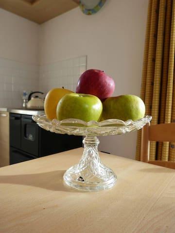 Appartamento nella valle delle mele - Cles