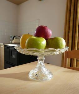 Appartamento nella valle delle mele - Cles - Apartment
