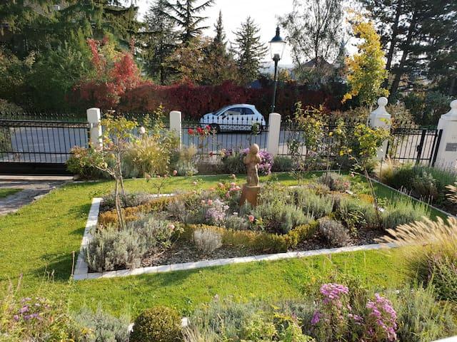 Herrlicher Ausblick in den liebevoll angelegten Vorgarten