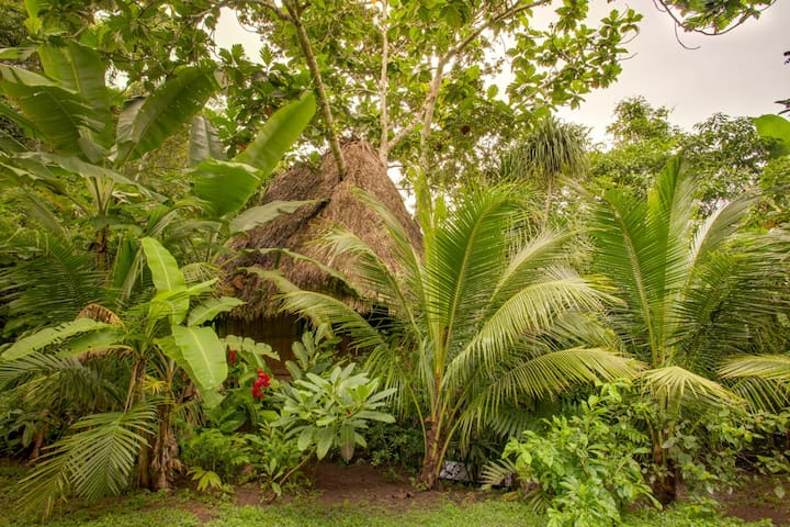 Jungle Hideaway over the waterfall