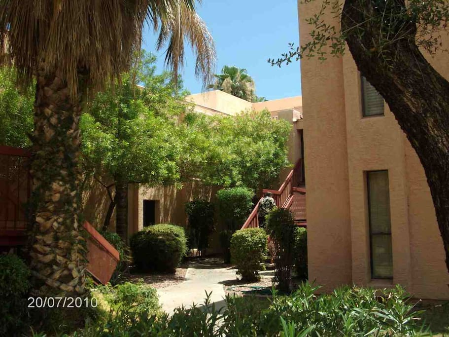 Clean and Green Complex, Lush Landscaping and Palm  http://www.vacationhomerentals.com/vacation-rentals/Phoenix-Arizona-vacation-rental-condo-proID-54347.html#ixzz2lDVZGxRG