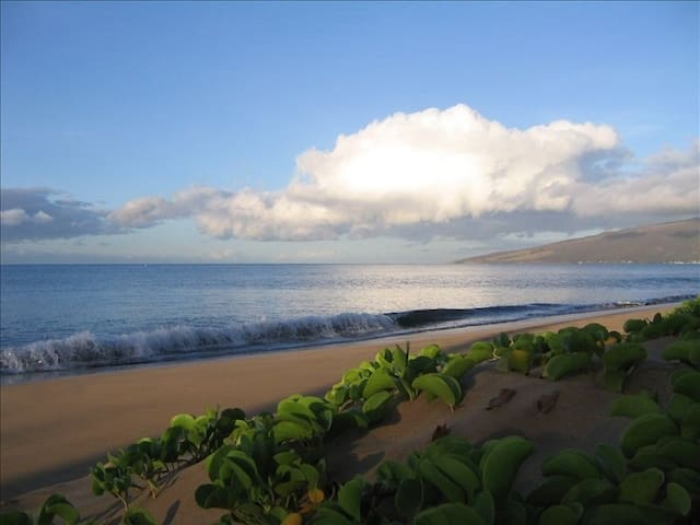 NEW LISTING- BEACHFRONT COMPLEX - Kihei