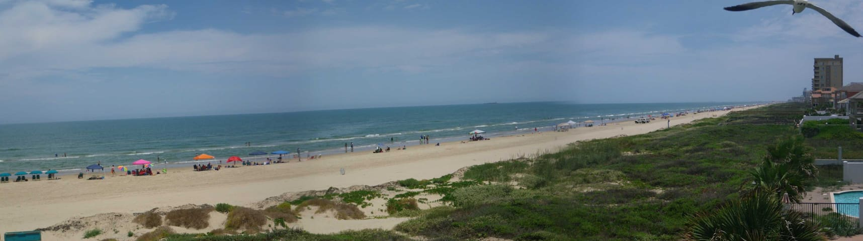 Beach Front Condo  - South Padre Island - Pis