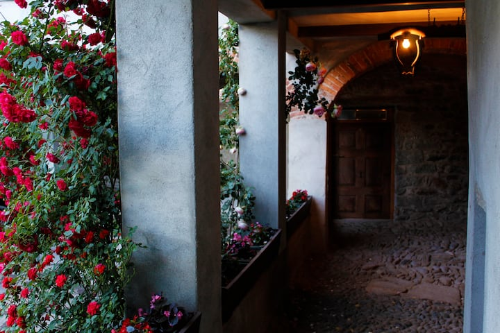 The House of the Roses 2