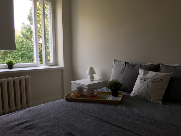 FOX apartment -  new designed and amaizing