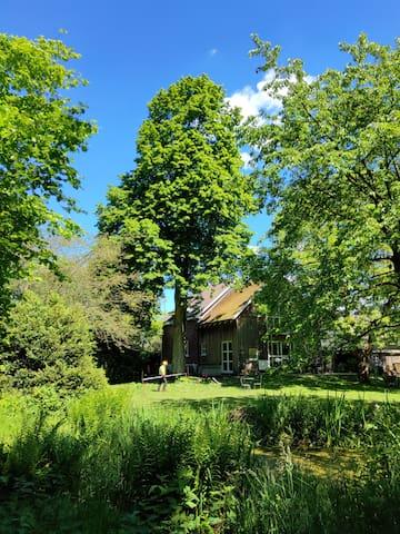 In 30 min in Hamburg Innenstadt, mit Garten