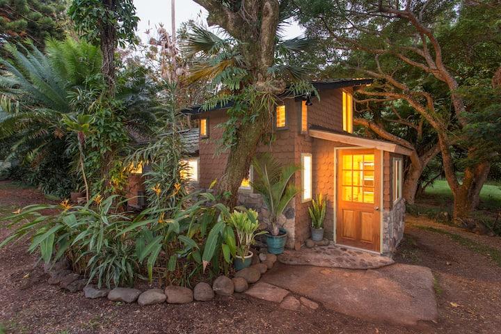 Adorable Garden Gingerbread House
