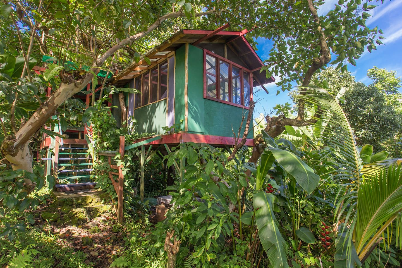 Tree Tops - Treehouse in Hana, Maui