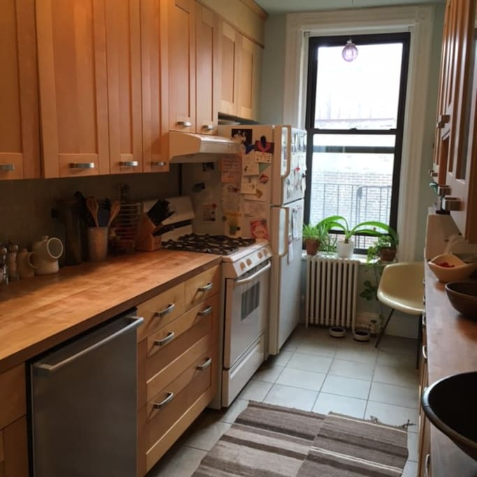 Generous kitchen with dishwasher and washer/dryer.