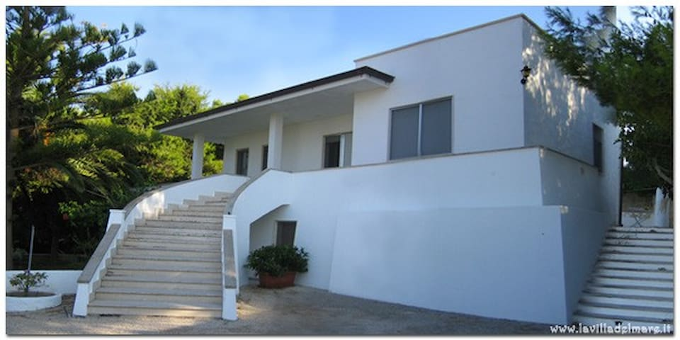 Nice and quite apartment 6/8 places in a villa - Torre Vado - Appartement