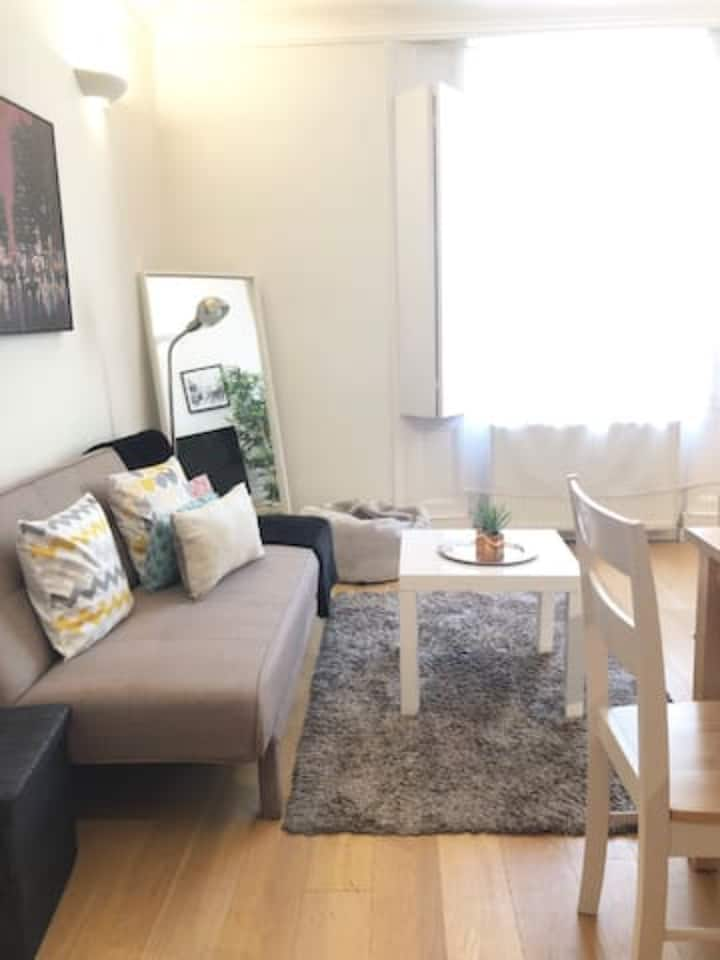 cosy and bright apartment in Angel