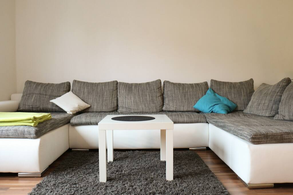 Comfy sofa in the living room for 2 persons