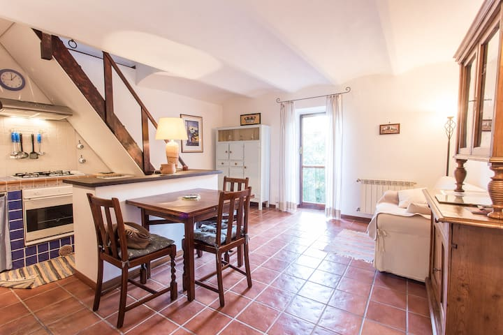 Torrita, lovely  roman countryside - Torrita Tiberina - Apartment