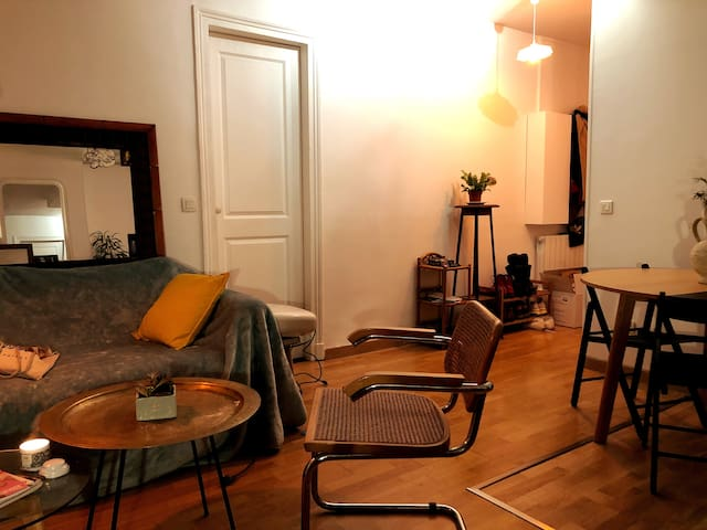 Charming flat to share with a cat