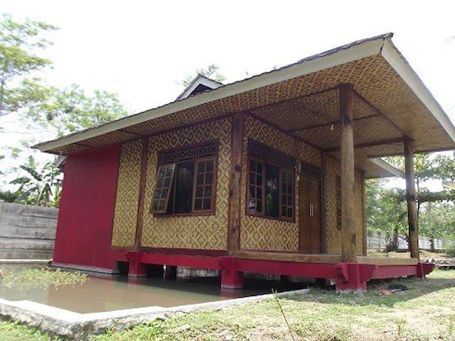 Villa - Pandeglang - Villa