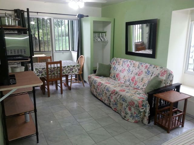 SUNNY III FULLY EQUIPPED EFFICIENCY - Christiansted - Lägenhet