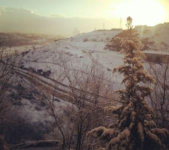 Essiz kış manzarasi - Istanbul