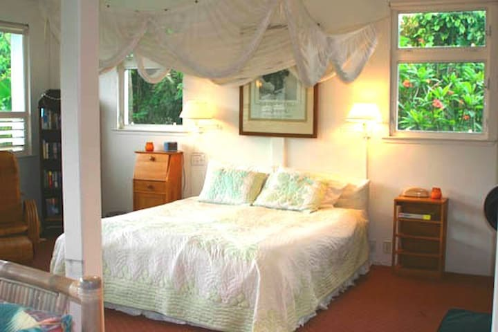 Romantic Hanalei Beach Honeymoon Rental TVNC 1280