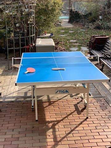 Ronkonkoma bsment, large yard, pool, pong, BBQ